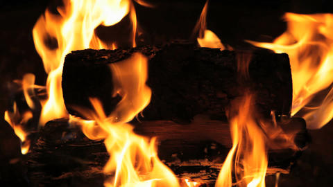 Fire Pit Stock Video Footage