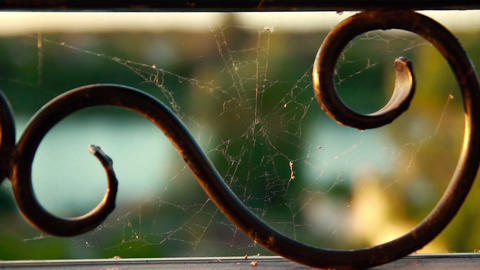 Cobweb On Metal Lattice stock footage