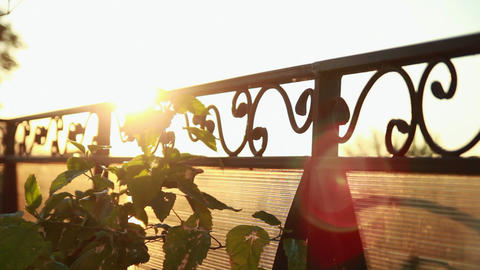 Sunbeam running across lattice Stock Video Footage