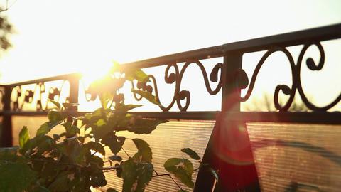Sunbeam running across lattice Footage