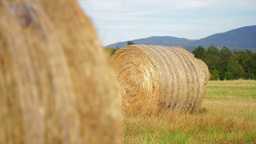Hay bales in a meadow Stock Video Footage