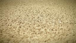 Dry cracked desert soil Stock Video Footage