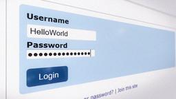 Login username password computer screen Stock Video Footage