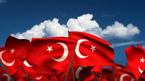 Waving Turkish Flags Stock Video Footage