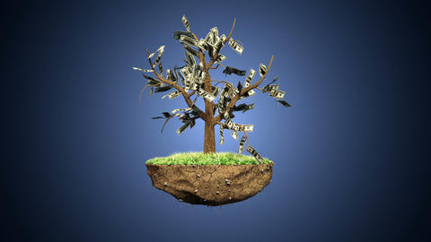 Plant a Dollar Harvest Thousands Animation