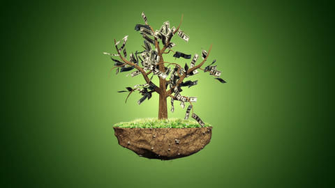 Plant a Dollar Harvest Thousands Animation
