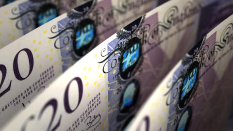 Pound Close-up Stock Video Footage