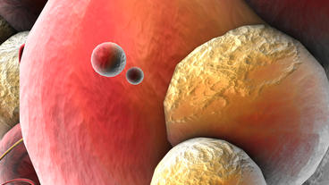 Virus cell division,Microscopic science fiction ab Stock Video Footage