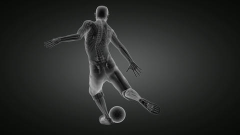 soccer game player Animation