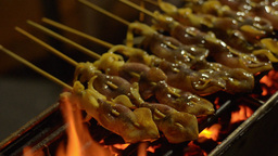 Vendor Laying Out Skewers of Squid for Grilling Stock Video Footage