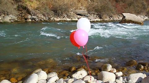 Three helium balloons are flown on the rocks by th Footage