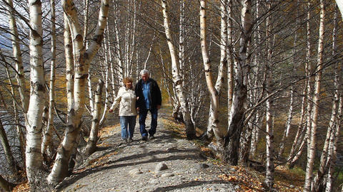 Happy elderly couple walking in the forest, smilin Stock Video Footage