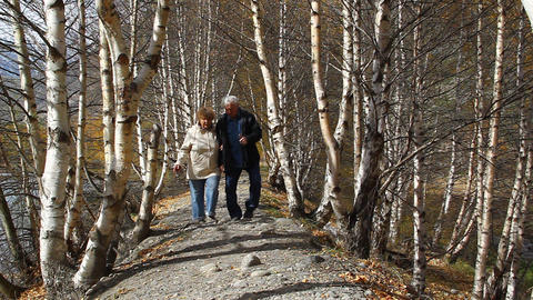 Happy elderly couple walking in the forest, smilin Footage