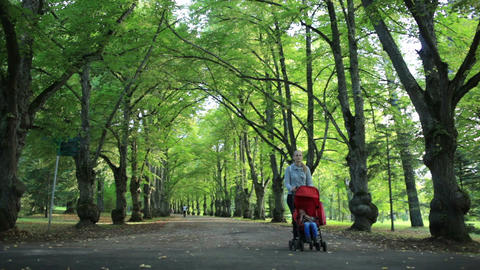 Woman taking her child for a walk in woodland Stock Video Footage