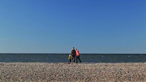 Family of three on pebble beach Stock Video Footage
