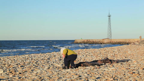 Little boy on pebble beach Stock Video Footage