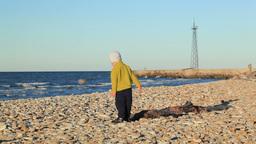 Little boy on pebble beach Footage
