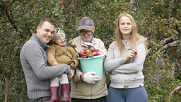 Family out collecting apples in the orchard Footage