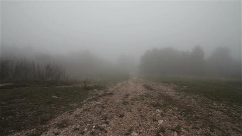Scary Hill Foggy Forest 6 Stock Video Footage