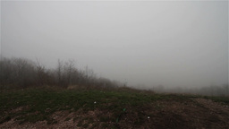 Scary Hill Foggy Forest 10 Stock Video Footage