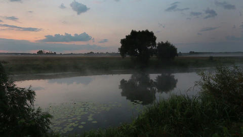 dawn at lake - circles on water Stock Video Footage