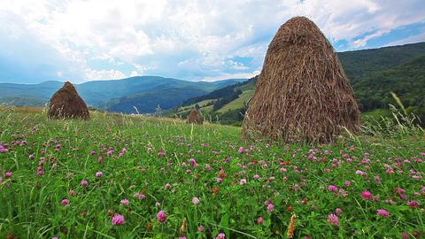 summer landscape with hut. timelapse Footage