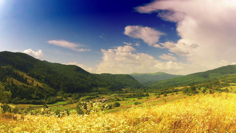 summer landscape. timelapse Stock Video Footage