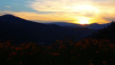 mountain landscape. sunset Stock Video Footage
