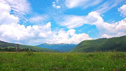 summer landscape. timelapse Stock Video Footage