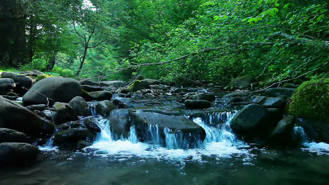 mountain stream in the forest Footage