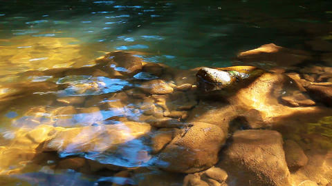 morning - the stones of the mountain river Stock Video Footage