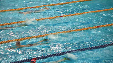 competitive swimming Footage
