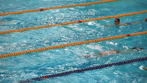 competitive swimming Stock Video Footage