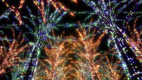 illumination tree neon Aa 2 HD Stock Video Footage