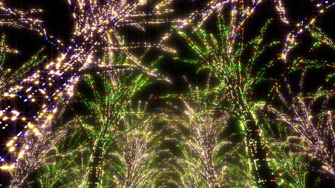 illumination tree neon Aa 2 HD Stock Video Footage