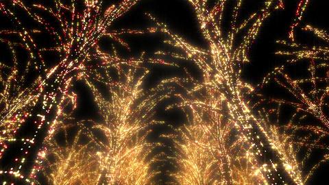 illumination tree neon Aa 4 HD Stock Video Footage
