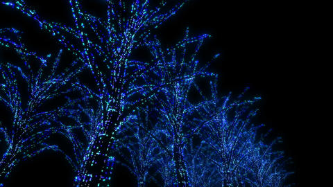 illumination tree neon B 3m HD Stock Video Footage