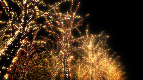 illumination tree neon B 4 HD Stock Video Footage