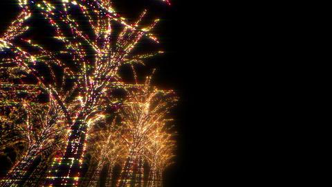 illumination tree neon D 1 HD Stock Video Footage