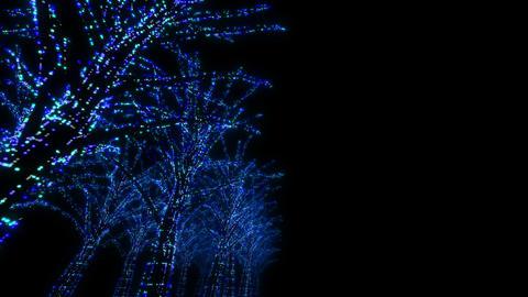 illumination tree neon D 3m HD Stock Video Footage