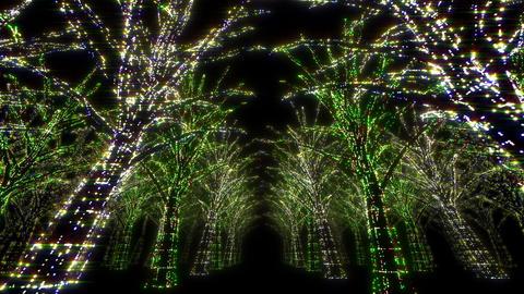 illumination tree neon Dd 2 HD Stock Video Footage