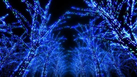 illumination tree neon Dd 3 HD Stock Video Footage