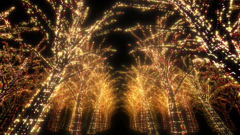 illumination tree neon Dd 4 HD Stock Video Footage