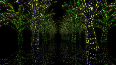 illumination tree neon H 2m HD Stock Video Footage