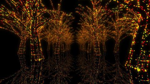illumination tree neon H 4m HD Stock Video Footage