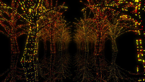 illumination tree neon H 4m HD Stock Video Footage