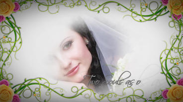 Wedding 064 stock footage