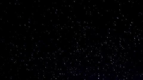 Raindrops HD Stock Video Footage