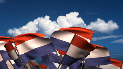 Waving Dutch Flags Stock Video Footage