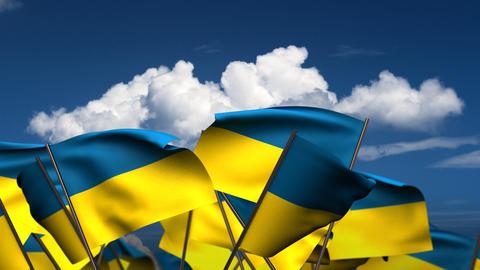 Waving Ukrainian Flags Stock Video Footage